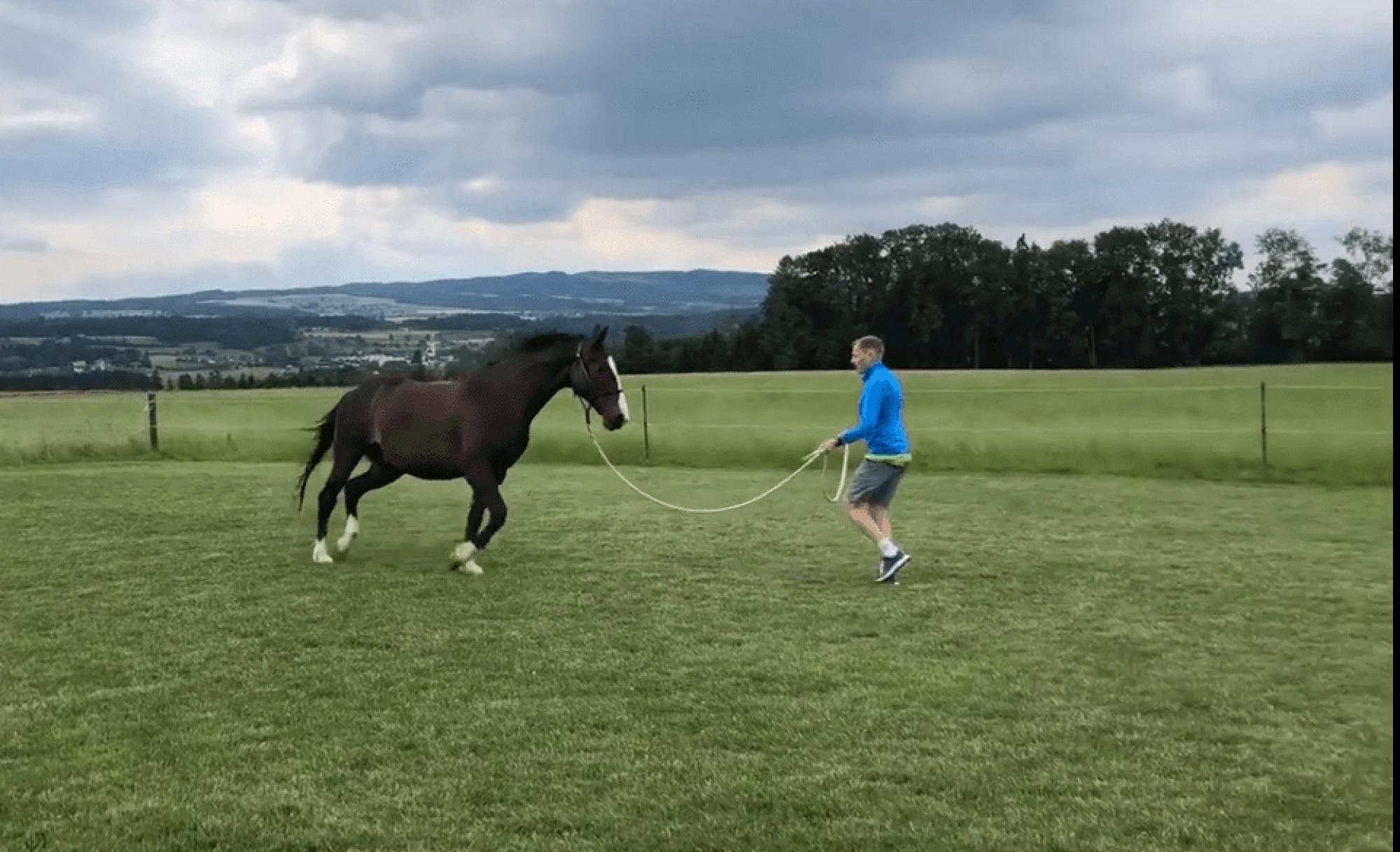 Der mit dem Pferd tanzt